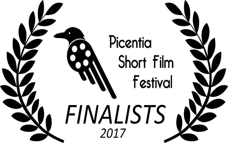 picentia,festival cinema,short film,cortometraggio