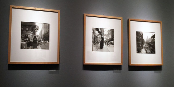 mostra vivian maier,vivian mayer genova,vivian mayer palazzo ducale,mostra fotografica genova,mostra fotografica palazzo ducale