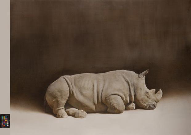 Marzio Tamer,rhino