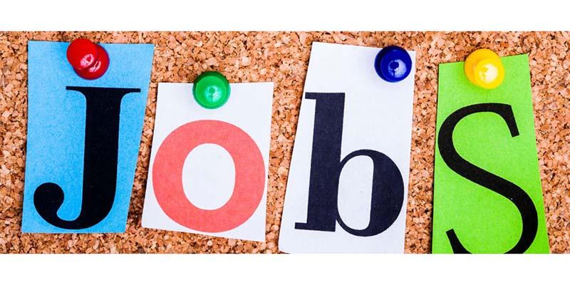 New JobbingFest