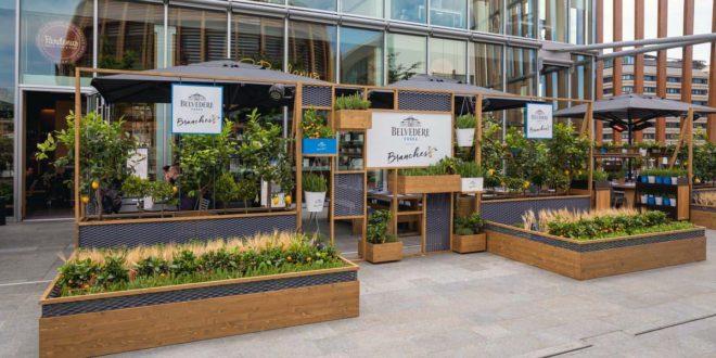 Belvedere Branches: l'innovativa drinking experience all'insegna della natura