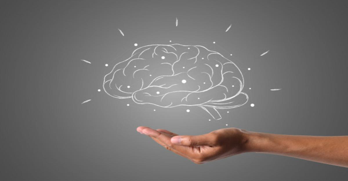 Cervello, neuroni